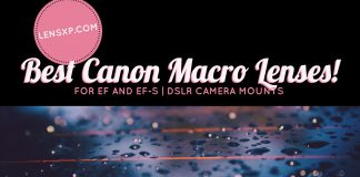 Best Canon macro lenses