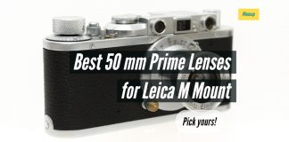 Best 50 mm Prime Lenses for Leica M Mount