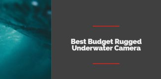 Best Budget Rugged Underwater Camera under $500 Point Shoot Options