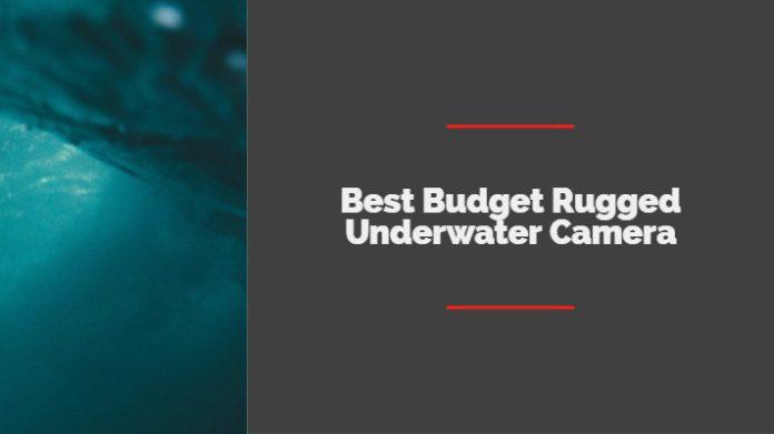Best Budget Rugged Underwater Camera under $500 Point Shoot Options