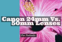 Canon 24mm Vs. 50mm Lenses