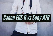 Canon EOS R vs Sony A7R