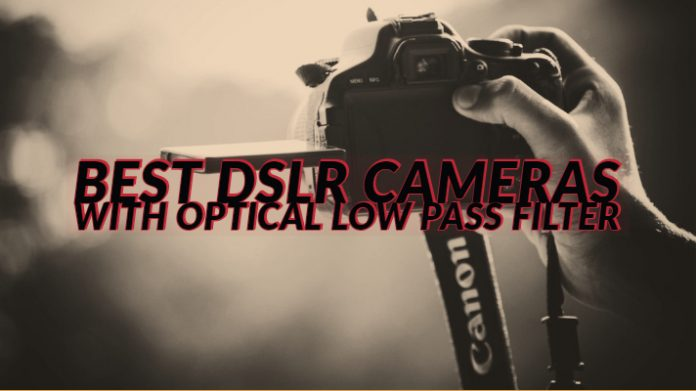 Best DSLR Cameras with Optical Low Pass Filter