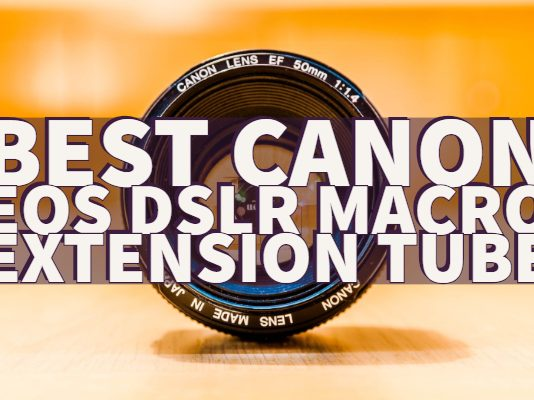 Best Canon EOS DSLR Macro Extension Tube
