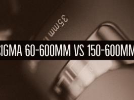 Sigma 60-600mm vs 150-600mm