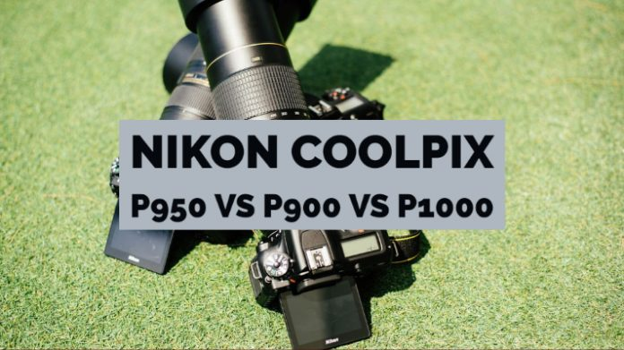 Nikon Coolpix P950 VS P900 VS P1000