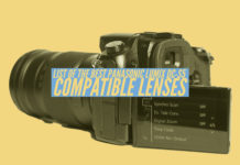 List of the best Panasonic Lumix DC-S5 Compatible Lenses