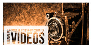 Mirrorless Cameras with 10-bit Color for Videos